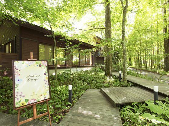 軽井沢サロンでは美しい中庭を眺めながらリラックスして相談を