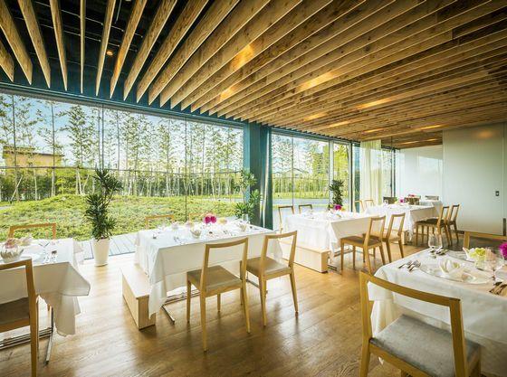 「レストラン・フォレスト」~35名様のレストランウェディング・光の差し込む空間で。